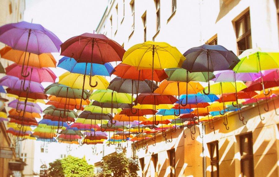 Piotrkowska 120 parasolki