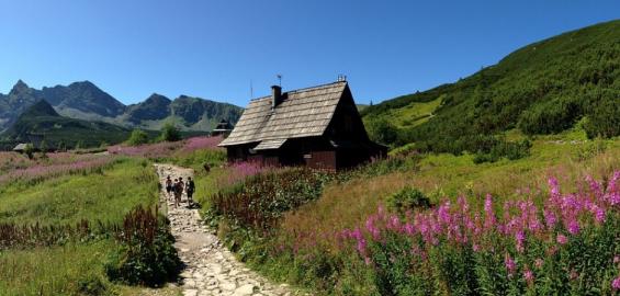 Doliny idealne na trasy w górach z dziećmi