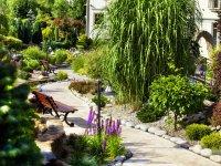 Galeria - ogród