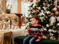 FOTY Sesja świąteczna Roksany Miarka