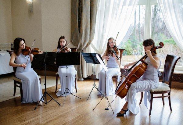 Glamour String Quartet