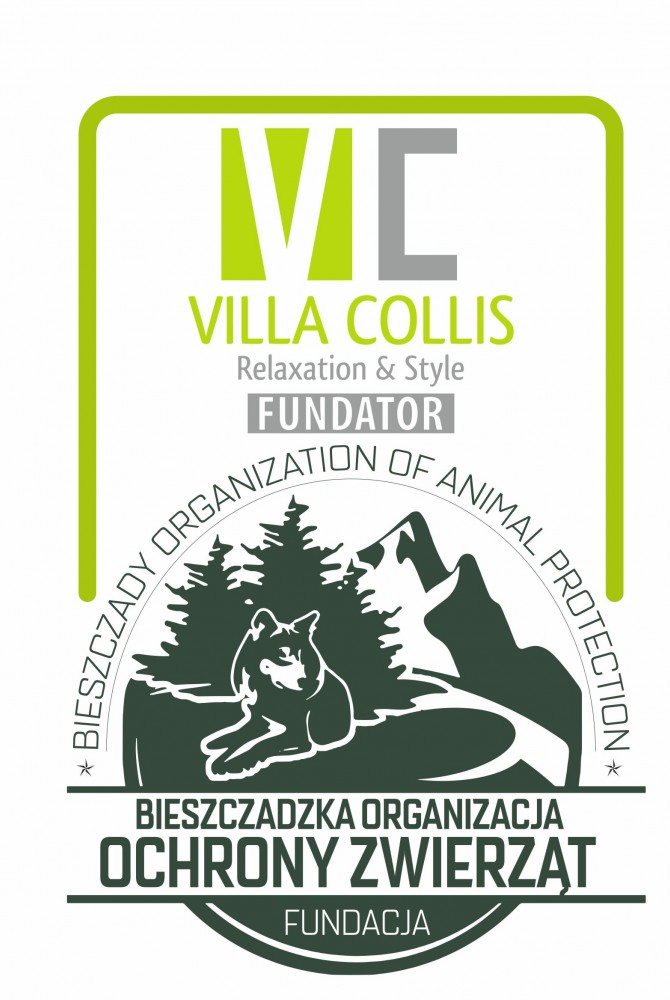 The Notarial Deed Was Written According To Instructions Of Krzysztof Kuncelman Who Is Funder Foundation And Represents Villa Collis