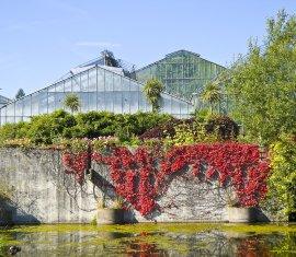 Neuer Botanischer Garten