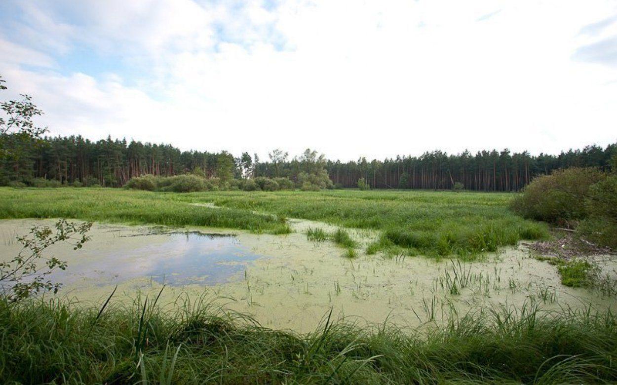 Wronia Woda