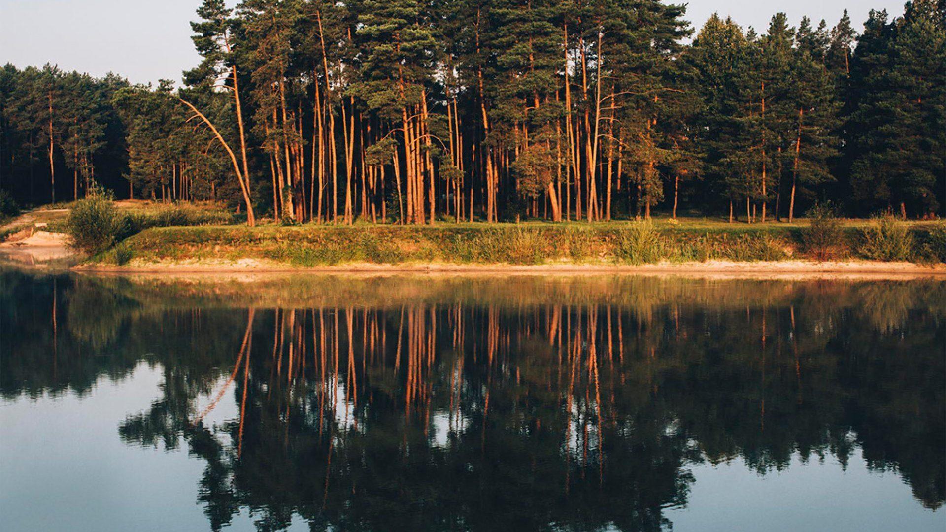 Resort i SPA Stara Wieś – komfortowe domki letniskowe i
