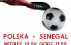 Onejrzyj z nami mecz POLSKA-SENEGAL (19.06.2018)!