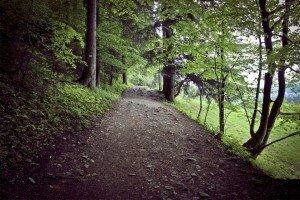Droga pod Reglami trail